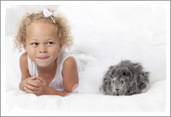 Isabella& The Guinea Pigs